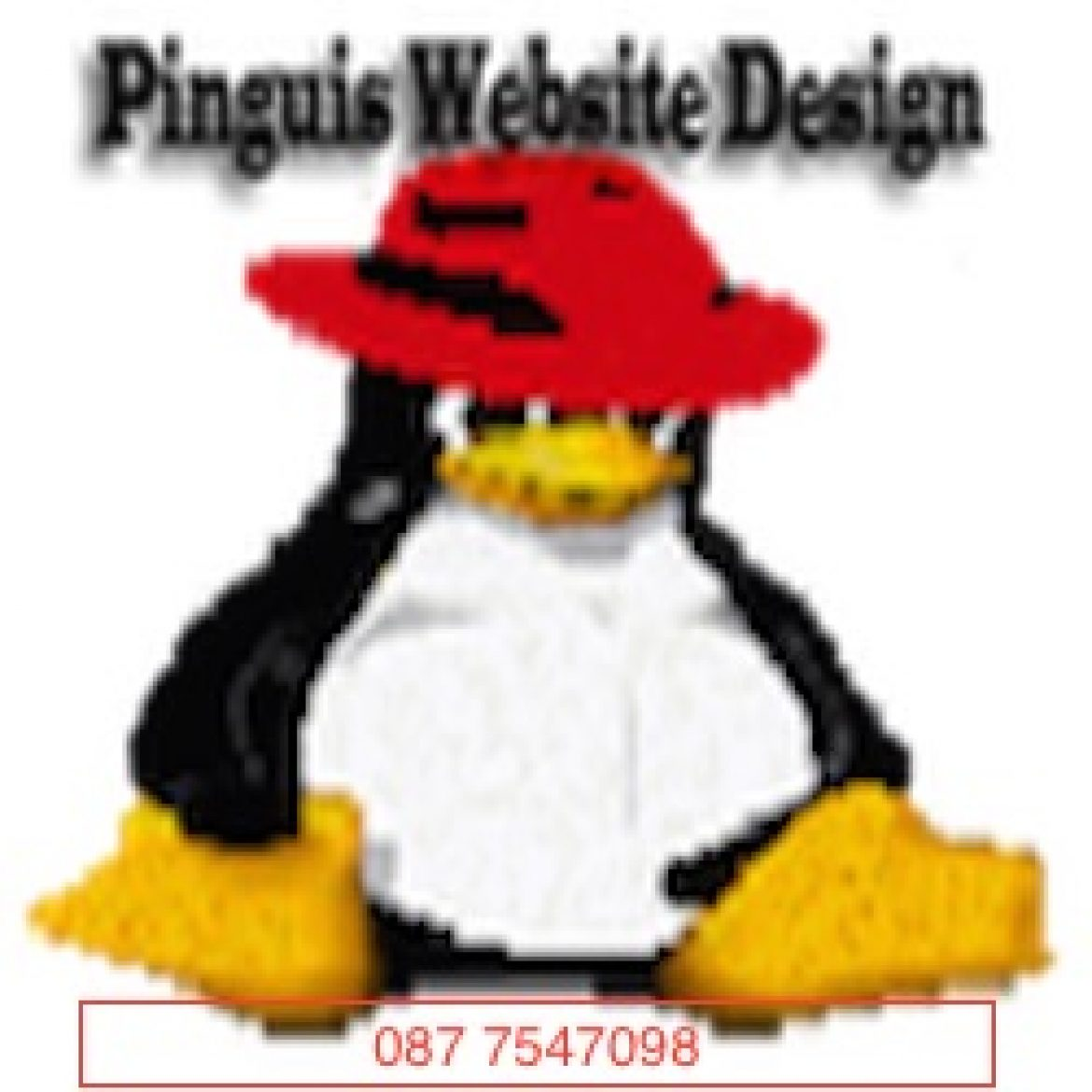 Pinguis Website Design Client SEO